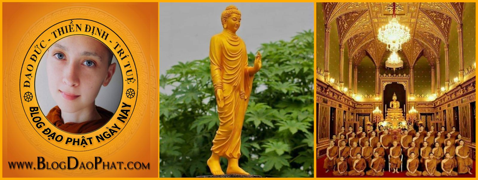 Bốn Chân Lý làm nền tảng giáo lý của Phật giáo là gì?  Tứ Điệu Đế
