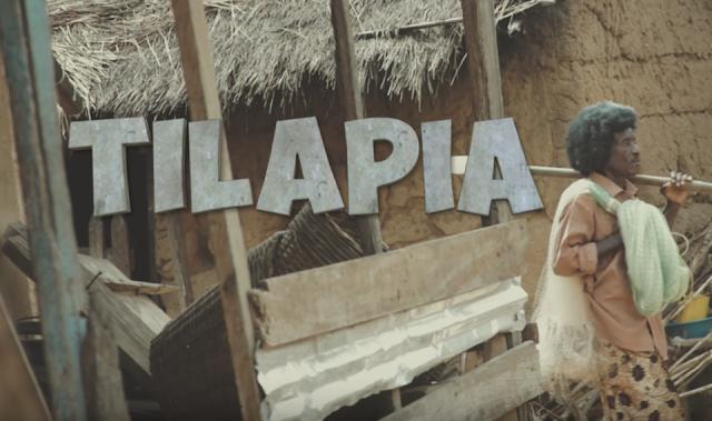 Video: Mr Eazi – Tilapia (Short Feem) Ft. Medikal