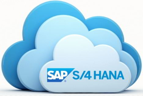 Manual Mantenimiento S4Hana Cloud Consultoria-SAP