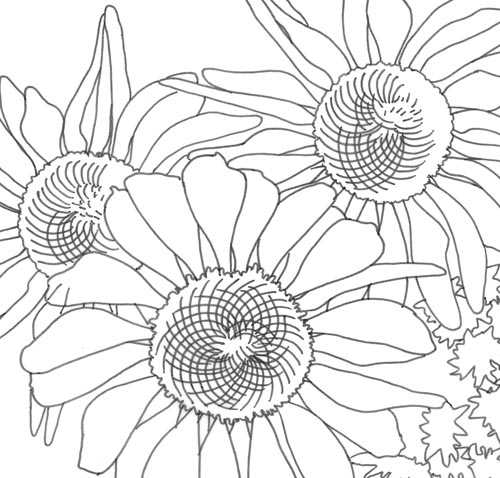 The Sketchbook Challenge: Fibonacci Flowers
