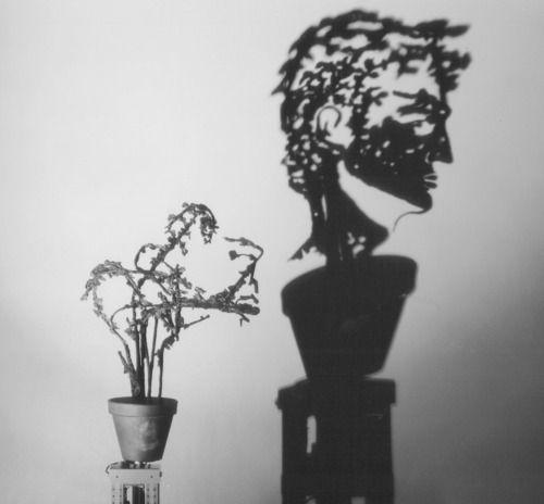 Arte con luz y sombra
