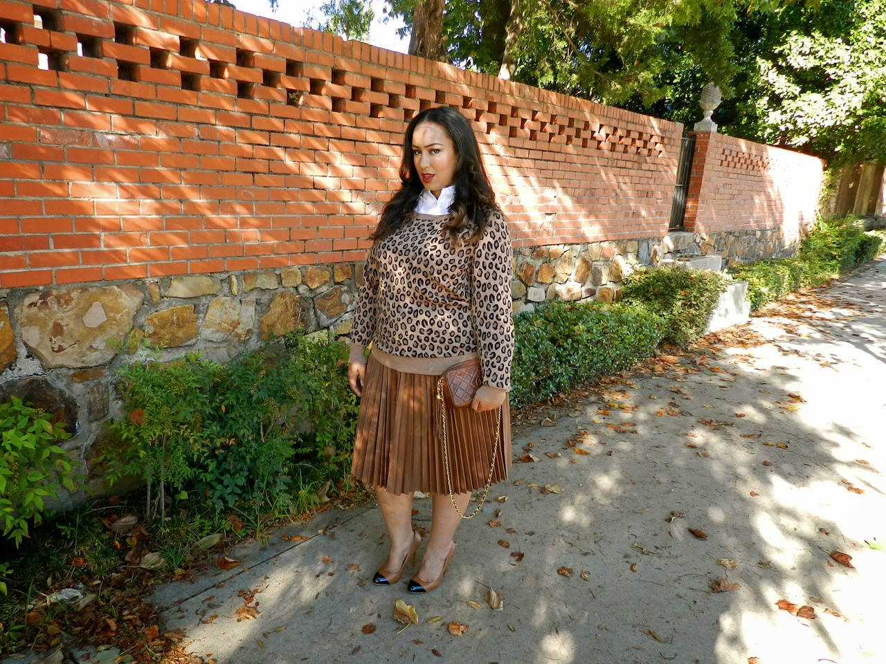 Beuticurve, Leopard, Neutral, plus size fashion