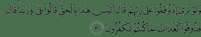 Surat Al-An'am Ayat 30