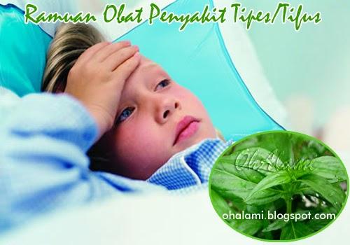 Ramuan Obat Herbal (Bahan Alami) Untuk Mengobati Penyakit ...