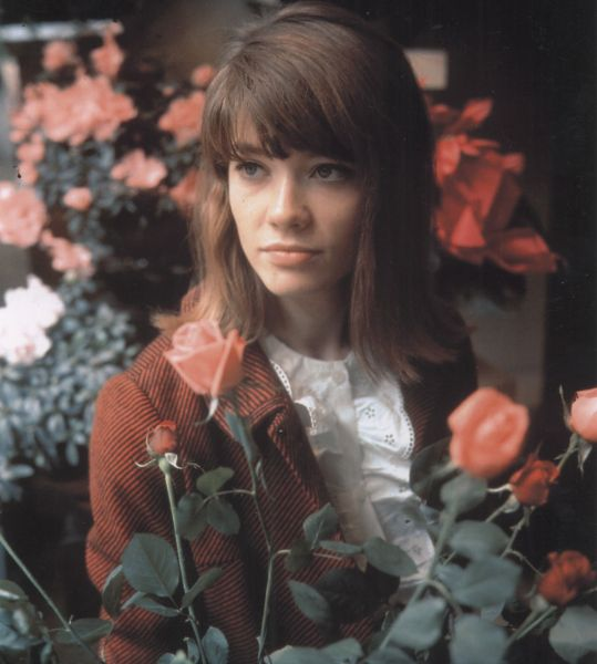 Image result for francoise hardy roses