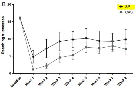 図:大豆たんぱく質の脳卒中リハビリ影響
