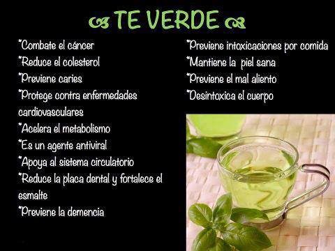 BENEFICIOS TÉ VERDE