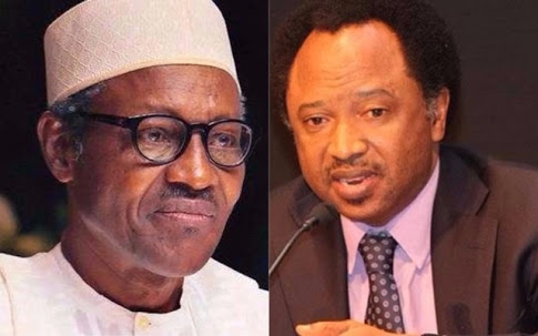 Buhari's Exit From Power Is The End Of APC - Shehu Sani