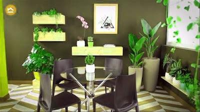 importancia de plantas de interior