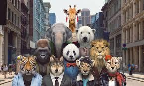 Percepção dos Animais