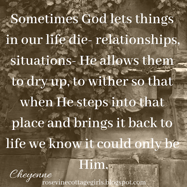 ometimes God lets things in our life die- relationships, situations- He allows them to dry up, to wither so that when He steps into that place and brings it back to life we know it could only be Him.