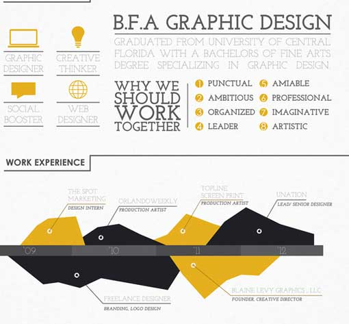 estilo infografia curriculum