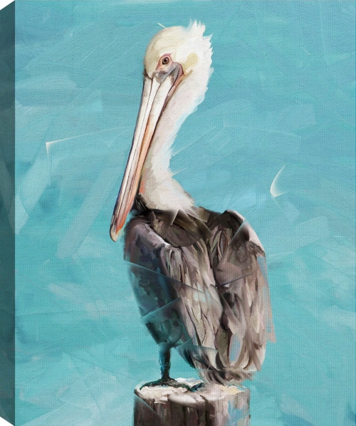 Pelican Canvas Art