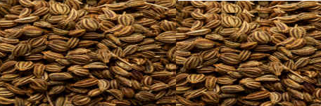 Ajwain (Carom seeds) for Acidity and Hyperacidity