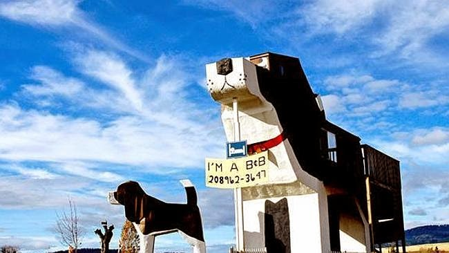 Spend a night inside the world's biggest beagle!