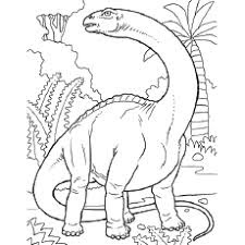 Dinosaur Coloring Pages For Kids Free Images