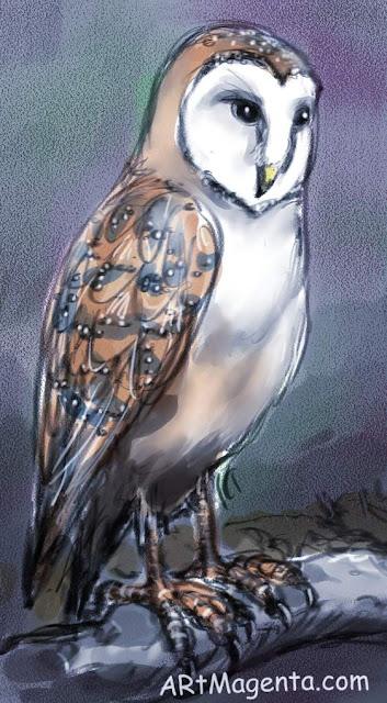 Barn Owl is a bird drawing by artist and illustrator Artmagenta