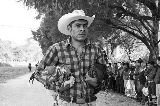 joven con dos gallos