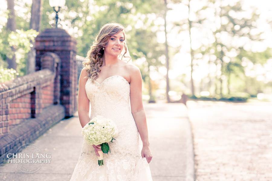 Image of Bride on the brick bridge at River Landing, Wallace NC - Wedding Pictures and ideas