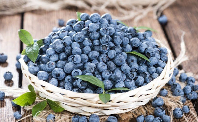 health benefits of blueberries,benefits of blueberries,blueberries,benefits of eating blueberries,blueberries benefits,blueberries health benefits,benefits of blueberries for health,health benefits of blueberry juice,benefits of berries,benefits,blueberry benefits,benefits of blueberry juice,health benefits of berries,benefits of blueberries for women,health benefits,benefits of eating blueberries everyday