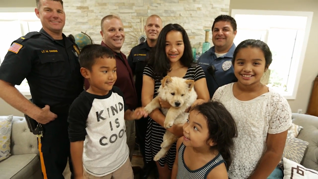 cranbury new jersey police puppy mia huang