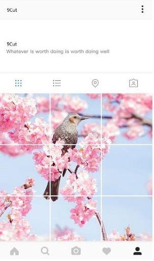 Cara Menyusun Timeline / Feed Instagram Nyambung di Android dan iOS