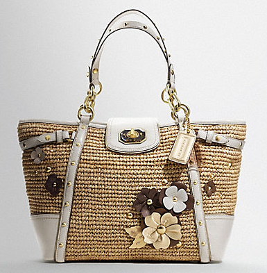 Shopping With Ayu Coach Floral Embellished Straw Natalie