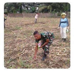 Rasa Bangga akan Kehadiran Babinsa Mengatasi Kesulitan Petani Bercocok Tanam