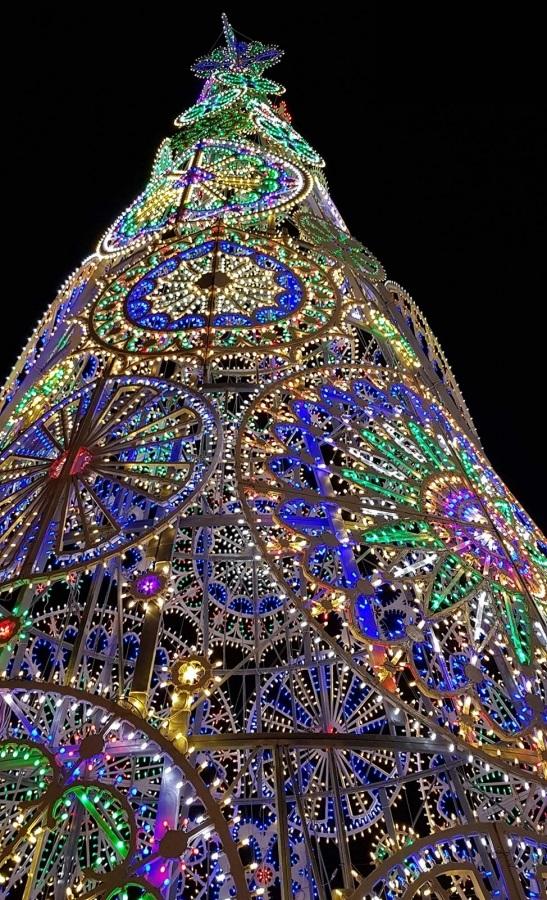 La Città Si Accende Con F Light Firenze Light Festival Dal 8