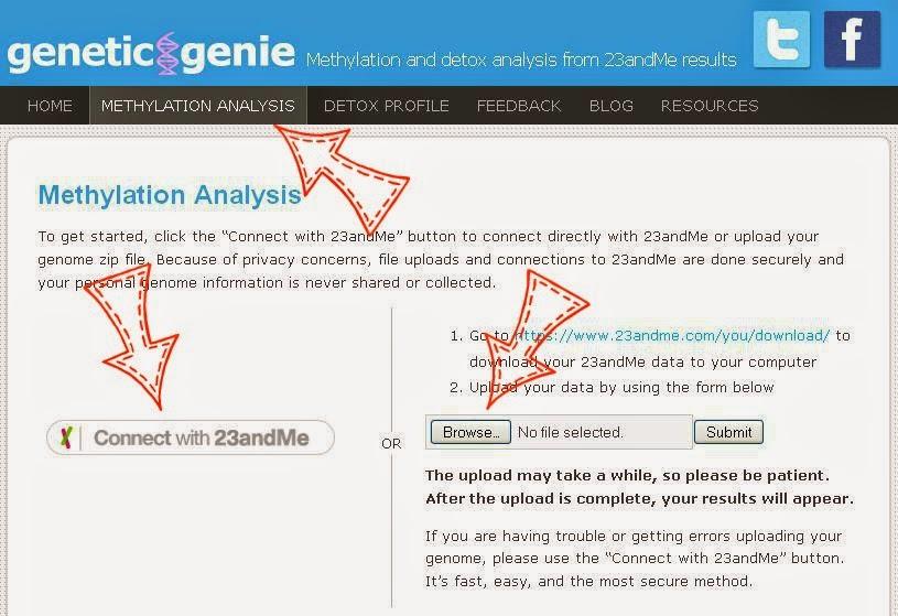 BioUnique Healing: How to Interpret RAW GENETIC DATA