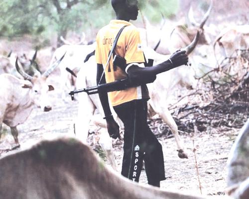 TROUBLE  as 30 Feared Dead In Fresh Herdsmen Attack – (FULL DETAILS)