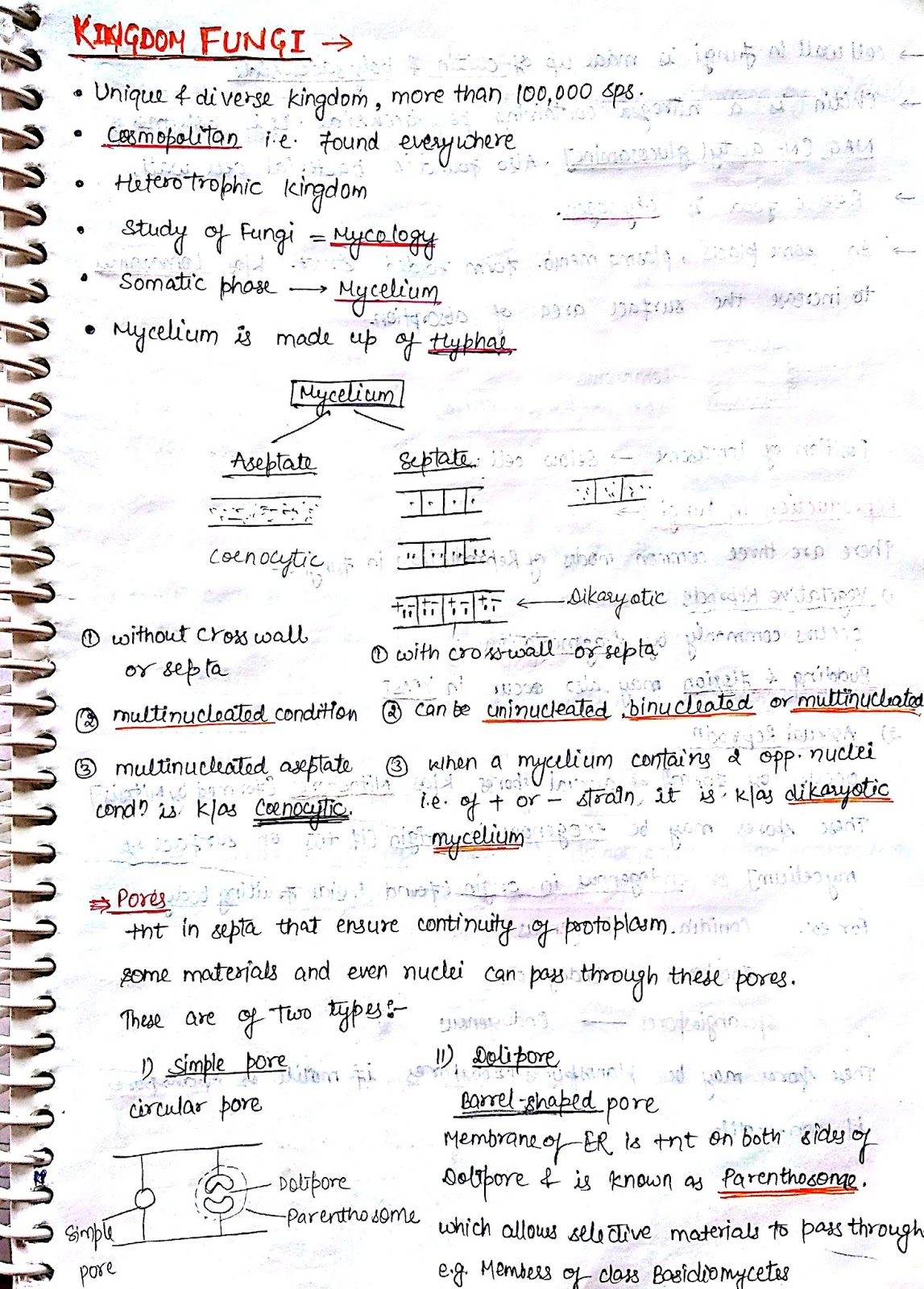 Neet aiims 2018 kingdom fungi notes biology geenschuldenfo Choice Image