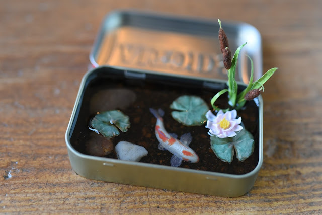 Koi fish pond in altoids tin