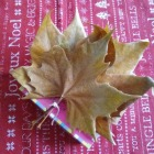 http://cosasmonasm.blogspot.com.es/2016/12/empaquetado-bonito-diciembre-hojas-secas.html