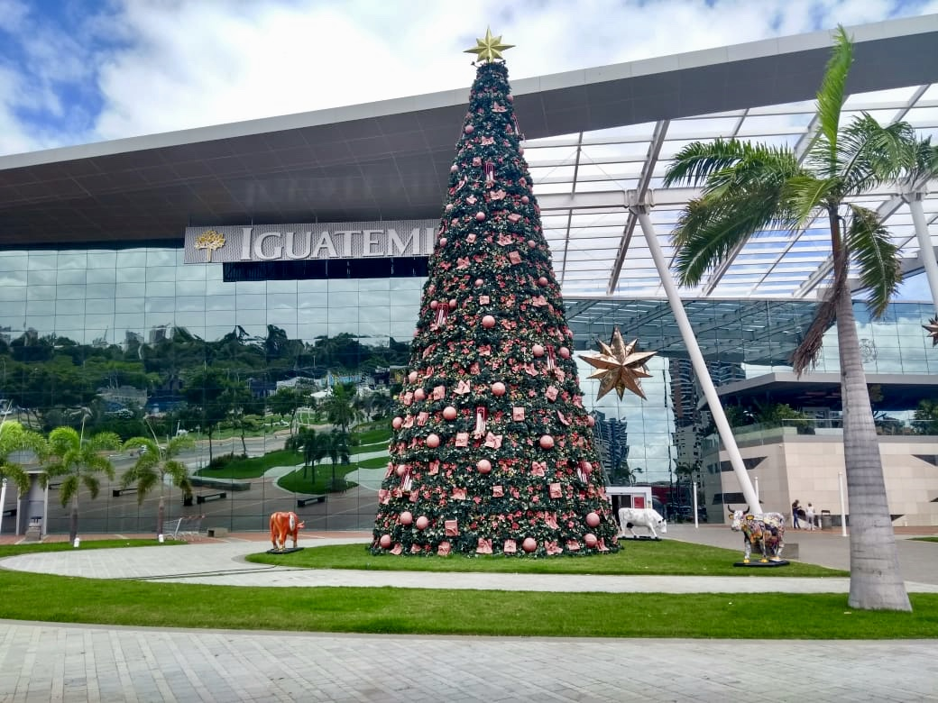 Shopping Iguatemi Fortaleza e clínica Immune realizam dia de ... 70196636a4
