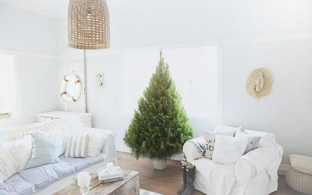 Inne Święta (pod palmą i eukaliptusem) - CZYTAJ DALEJ