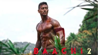 Bhaagi Movie Poster