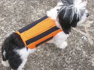 redutor de movimento de cães