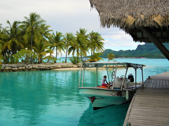 Image Result For Bora Bora Things To Do New My Pacifika Best Things To Do In Dreamy Bora Bora
