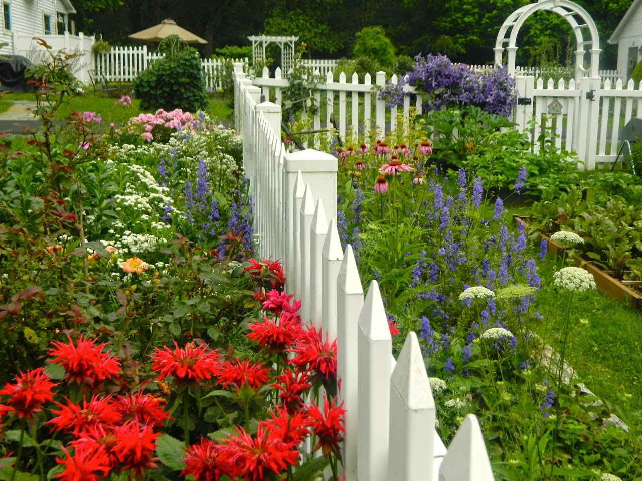Garden style the english cottage garden where the old - Old Fashioned Flowers