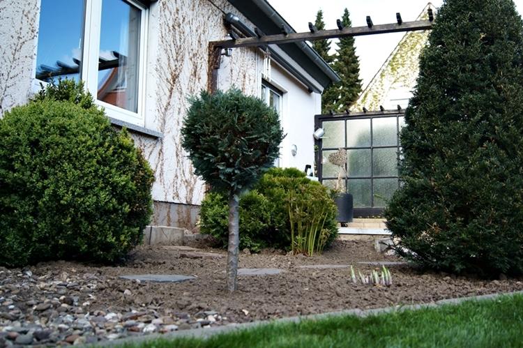 neu bepflanztes Terrassenbeet