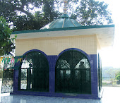 Shrine of Baba Shadi Shaheed