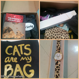 CatLadyBox collage: Two photos of the CatLadyBox after it has just been opened, a photo of the Cats Are my Bag tote bag, and a photo of a leopard-print watch.