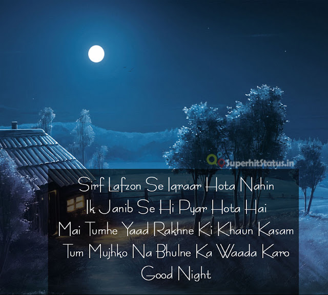 Good Night SMS SHayari in HIndi Pics