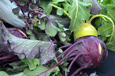 Kohlrabi at the Green Market in Piedmont Park