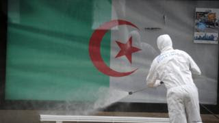Corona-Egypt-closes-23-medical-facilities-and-Algeria-records-the-highest-daily-death-rate