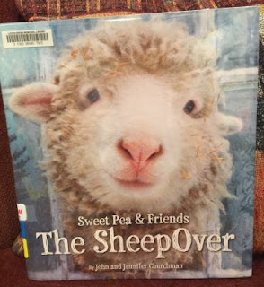 https://www.amazon.com/SheepOver-Sweet-Pea-Friends/dp/0316273562/ref=sr_1_1?s=books&ie=UTF8&qid=1501720505&sr=1-1&keywords=the+sheepover+sweet+pea+%26+friends