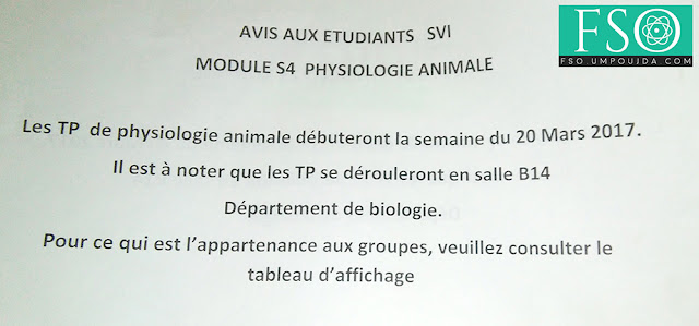 SVI S4 : TP de Physiologie Animale
