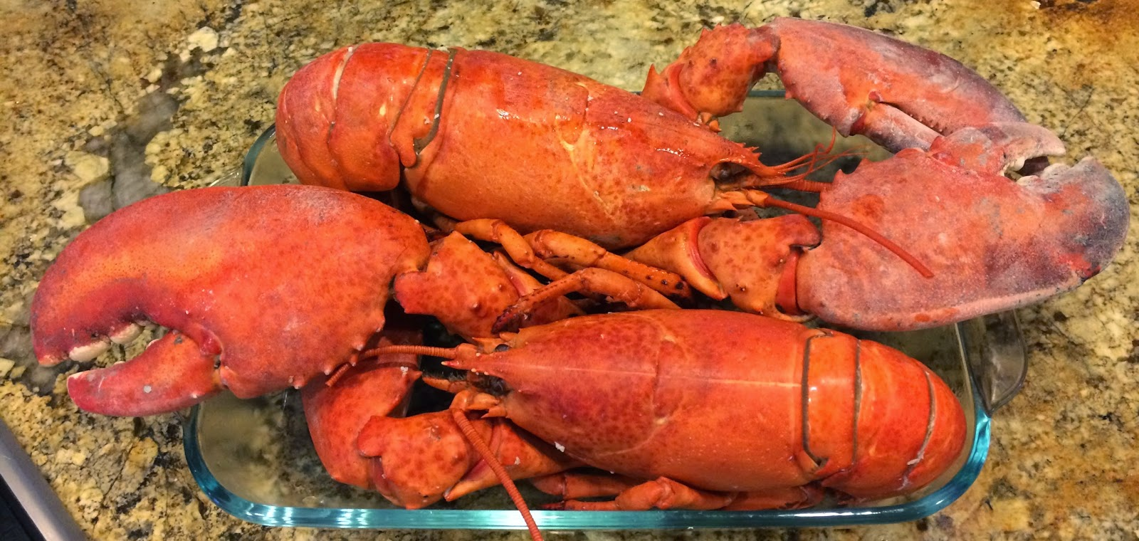 TASTE OF HAWAII: COSTCO PRE-COOKED LOBSTER - DINNER AT HOME
