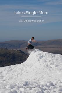 Saal Digital Wall Decor Review